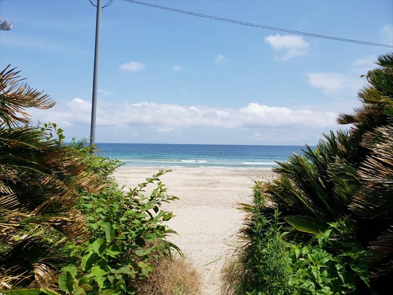 夏はもうすぐ!下田の海へ!
