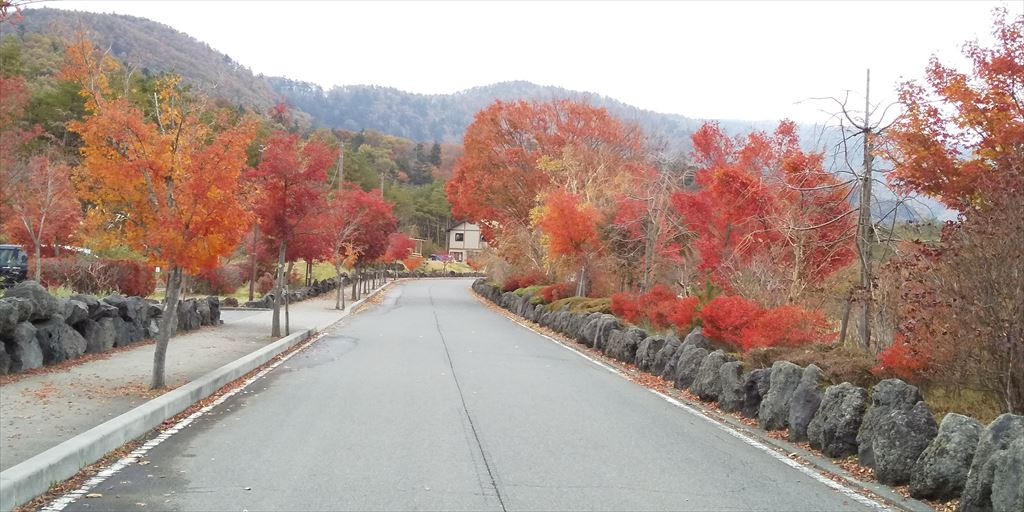 紅葉始まってます。