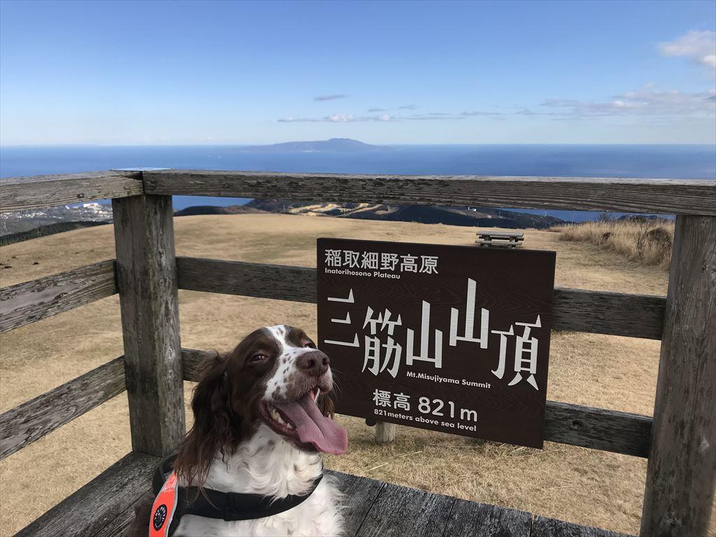 細野高原へ ハリーと散歩