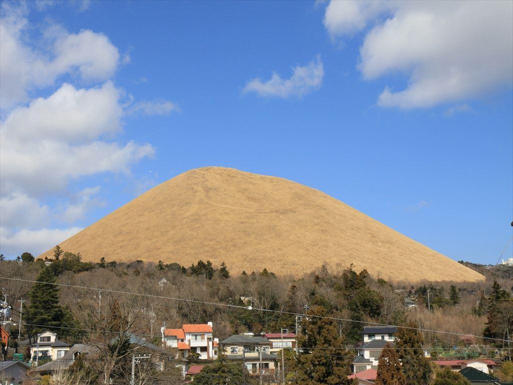 伊豆高原に春の訪れ!
